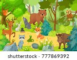Wild Animals On Forest. Vector...