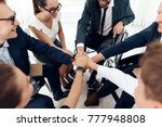 collective work of full fledged ...   Shutterstock . vector #777948808