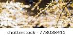 lights bokeh from led lights... | Shutterstock . vector #778038415