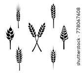 types of grains  cereals icons  ... | Shutterstock . vector #778067608