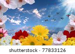beautiful flowers against the... | Shutterstock . vector #77833126