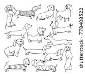 set of dog dachshund... | Shutterstock . vector #778408522
