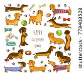 set of dog dachshund... | Shutterstock . vector #778408528