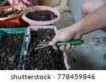 man's hand hold soil fork ... | Shutterstock . vector #778459846