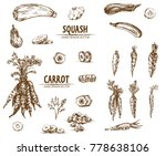 digital vector detailed line... | Shutterstock .eps vector #778638106