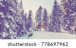 wintry landscape scenery. retro ... | Shutterstock . vector #778697962