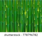 green bamboo tropical panorama... | Shutterstock .eps vector #778796782
