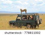 maasai mara  mara   kenya  ... | Shutterstock . vector #778811002