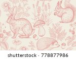 forest animals and plants... | Shutterstock .eps vector #778877986