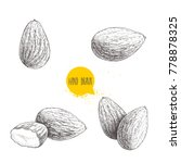 hand drawn sketch style almond... | Shutterstock .eps vector #778878325