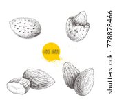 hand drawn sketch style almond... | Shutterstock .eps vector #778878466