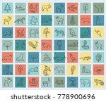 flat asian flora and fauna ... | Shutterstock .eps vector #778900696