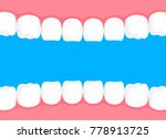 human teeth in mouth. info... | Shutterstock .eps vector #778913725