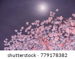 cherry blossoms and moon at... | Shutterstock . vector #779178382
