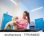 Stock photo young woman working in pet shop trimming dog hair girl grooming puppy for beauty in store people 779196832