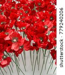 Small photo of The remembrance poppy is an artificail flower to commemorate military personnel who have died in war.