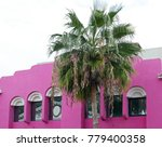 pink house facade with a palm... | Shutterstock . vector #779400358