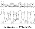 standing dogs front and back... | Shutterstock .eps vector #779414386