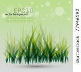 green vector grass background... | Shutterstock .eps vector #77946592