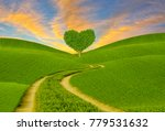Green Heart Shaped Tree On A...