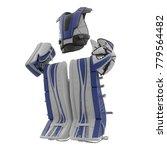 hockey goalie protection kit on ... | Shutterstock . vector #779564482