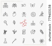 biology line icons set | Shutterstock .eps vector #779603158