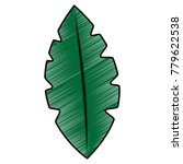 leaf delicate icon image  | Shutterstock .eps vector #779622538