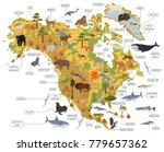 north america flora and fauna... | Shutterstock .eps vector #779657362