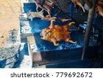 barbecued suckling pig ... | Shutterstock . vector #779692672