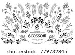 bloom collection. set of hand... | Shutterstock .eps vector #779732845