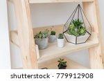 geometric glass florarium vase...   Shutterstock . vector #779912908