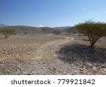 landscape of arabian peninsula. ... | Shutterstock . vector #779921842