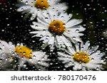 flowers through the window... | Shutterstock . vector #780170476