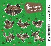 cute hand drawn tribal racoon... | Shutterstock .eps vector #780265756