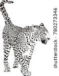 black and white vector sketch...   Shutterstock .eps vector #780273346