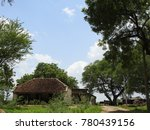 Small photo of An village in india. Pantile roof house, road, surrouded by trees and greenery