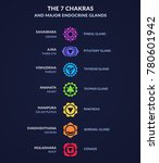 infographic on body chakras and ... | Shutterstock . vector #780601942