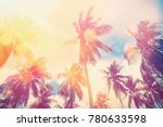 tropical palm tree with... | Shutterstock . vector #780633598