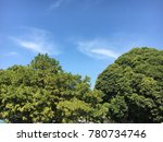 two big tree with green fresh... | Shutterstock . vector #780734746