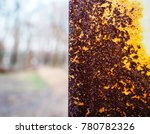beautiful rusty texture | Shutterstock . vector #780782326