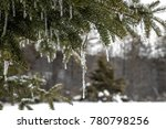 long icicle on northern... | Shutterstock . vector #780798256
