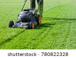 Worker guy shake pour grass from lawn mower bag into wheelbarrow. Garden meadow lawn cutting. Summer works in garden. Static shot. - stock photo