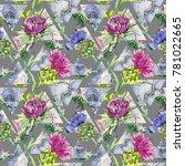 wildflower thistle flower... | Shutterstock . vector #781022665
