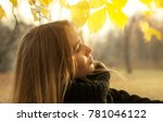 girl on a background of autumn... | Shutterstock . vector #781046122