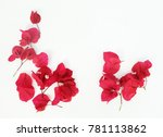 red bougainvillea flower... | Shutterstock . vector #781113862