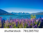 los alerces national park ... | Shutterstock . vector #781285702
