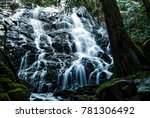 secret waterfall in winter time ... | Shutterstock . vector #781306492
