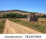 el camino de santiago...   Shutterstock . vector #781507846