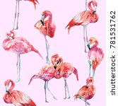 flamingos illustration pattern | Shutterstock . vector #781531762