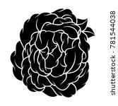 flower rose  black and white.... | Shutterstock .eps vector #781544038